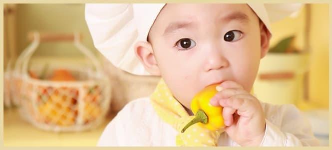 batidora para pures bebes