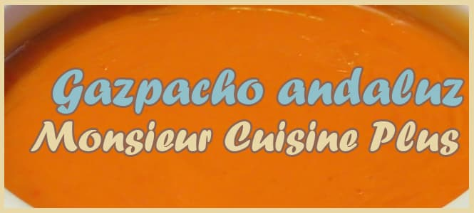 Cómo hacer gazpacho andaluz en monsieur cuisine plus